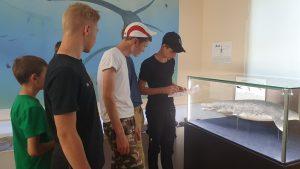 «Музейные недели в Ульяновской области» (1)