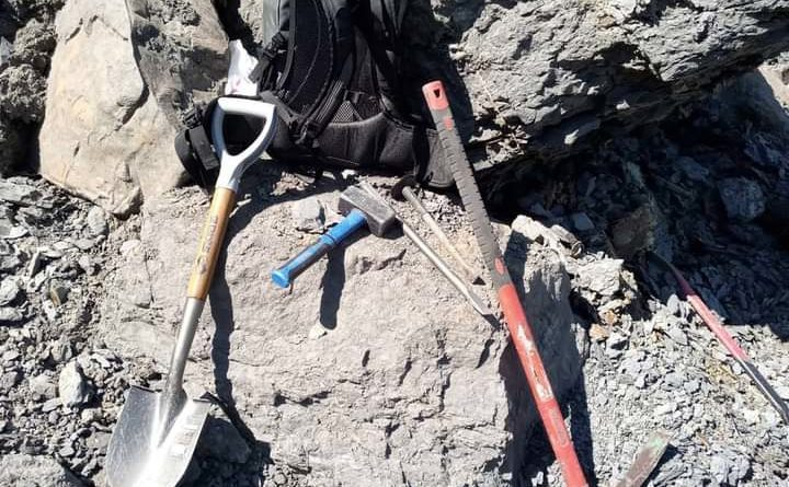На раскопках скелета ихтиозавра